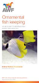 Ornamental Fish Keeping